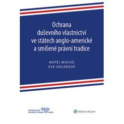Ochrana duševního vlastnictví ve státech anglo-americké a smíšené právní tradice